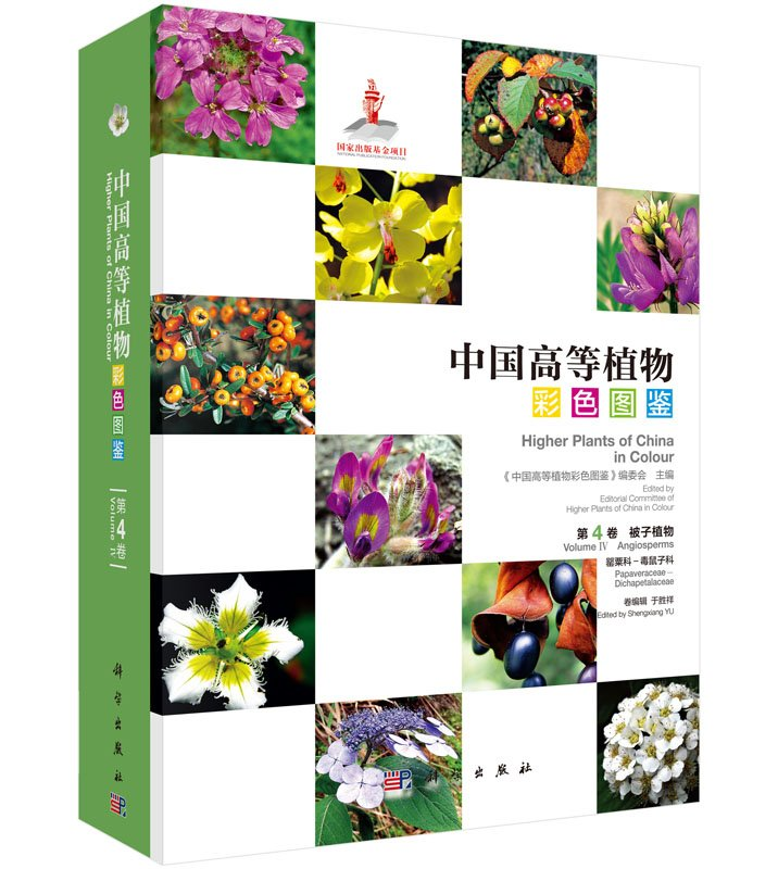 Higher plants of China in colour: Volume IV Angiosperms Papavra