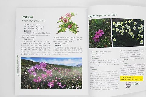 Field Guide to Alpine Flowers in Wolong National Nature Reserve